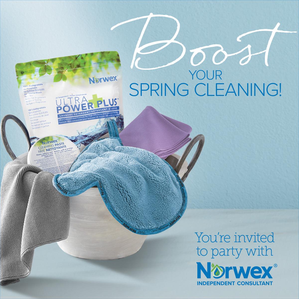 Norwex, clean chemical company, social media, social media advertisement